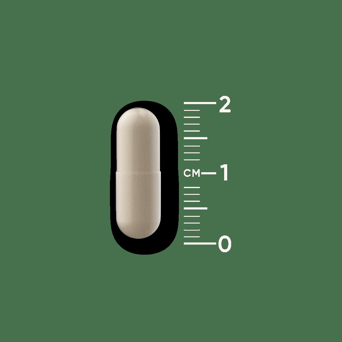 Vegan probiotica capsule