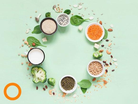 70+ eiwitrijke producten. Tuurlijk ook plantaardig!