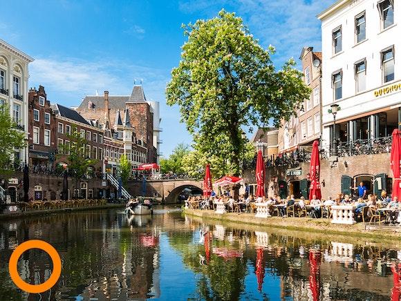 Top 6 Nederlandse steden met meeste plantaardige restaurants